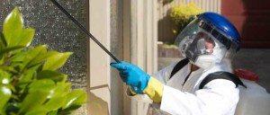 شركات مكافحة حشرات بالرياض  شركة مكافحة حشرات بالرياض بالخرج 0503152005 insectcontrol1