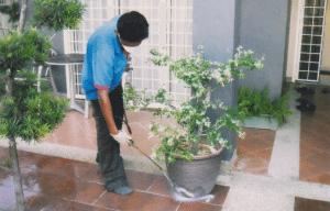 شركة رش مبيدات حشرية  شركة مكافحة حشرات بالرياض بالخرج 0503152005 madani31