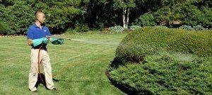 شركة مكافحة حشرات ببريدة شركة مكافحة الحشرات ببريدة 0533942977 وعنيزة insectanddiseasemanagement