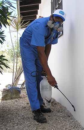 شركة مكافحة حشرات بالرياض بالخرج 0503152005