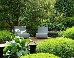 شركة تنسيق حدائق وبيع أشجار بالرياض
