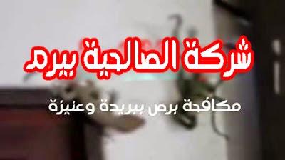 Photo of شركة مكافحة برص ببريدة 0533942977 وعنيزة