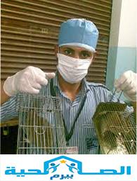 Photo of شركة مكافحة الفئران بعنيزة 0533942977