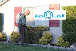 شركة رش مبيدات بالمذنب 0533942977