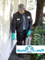 شركة رش مبيدات بالقصيم شركة رش مبيدات بالقصيم شركة رش مبيدات بالقصيم htr
