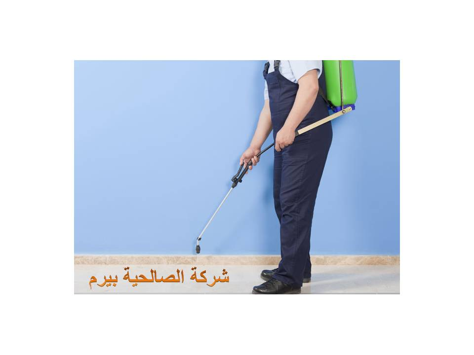 Photo of شركة مكافحة العته بالزلفي 0533942977