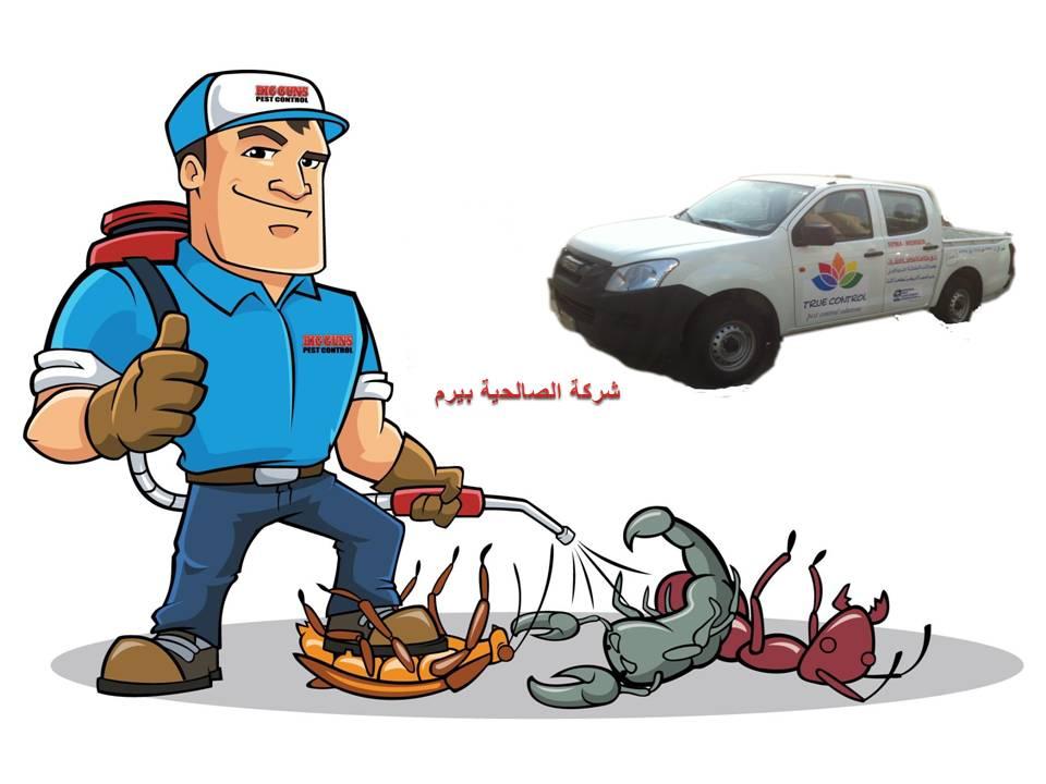 Photo of شركة مكافحة حشرات بالبدائع 0533942977
